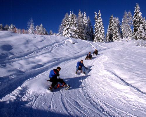 Sáňkování ve Ski Amadé